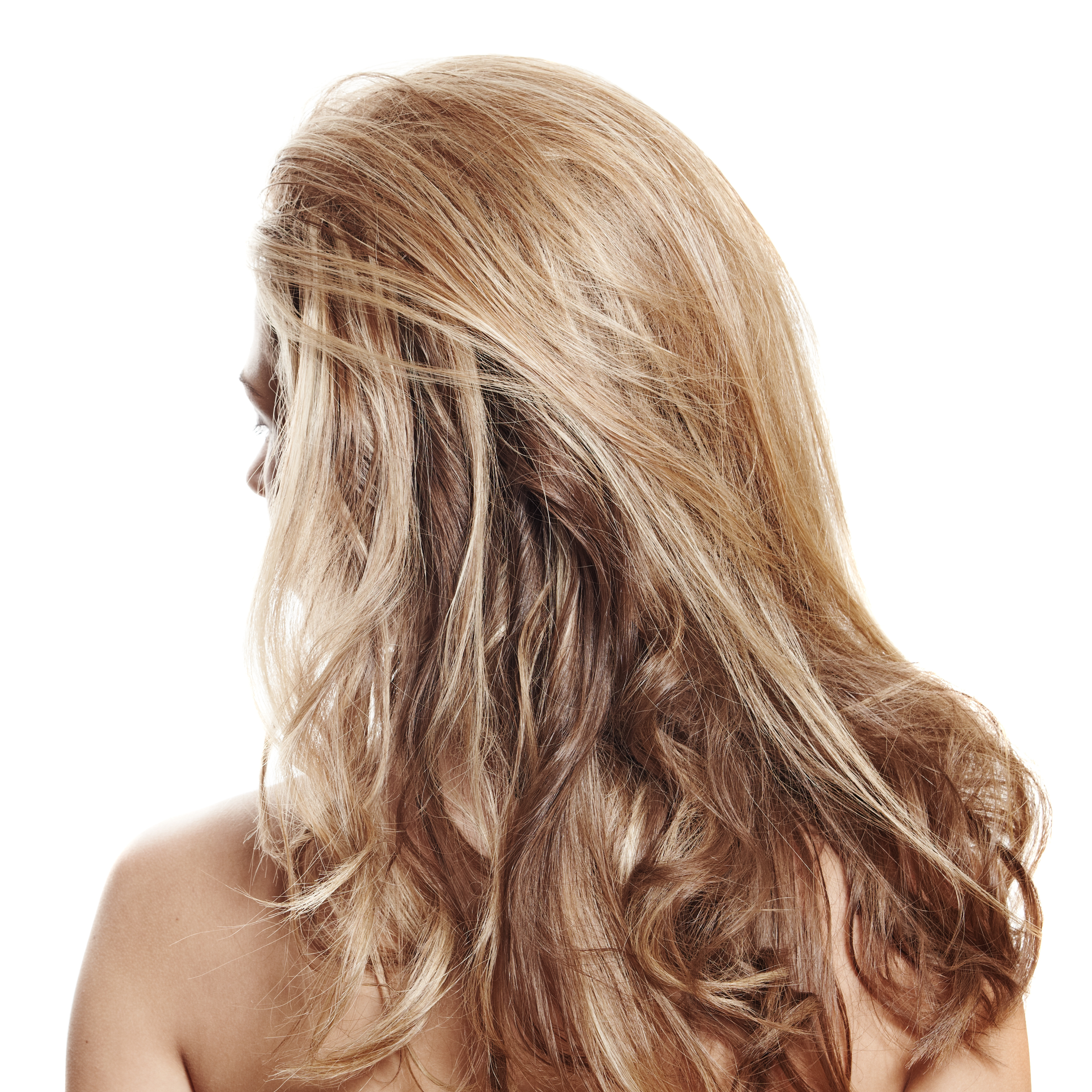 Фото девушки с русыми волосами вид со спины 12 фотография